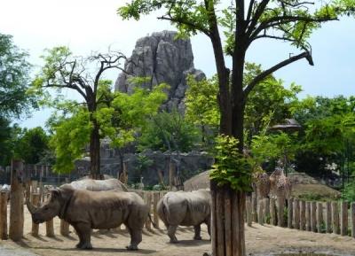 حديقة حيوان بودابست