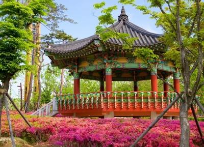 حديقة بوسان للمواطنون