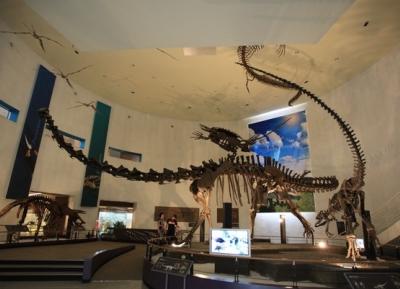 متحف التاريخ الطبيعي في موكبو