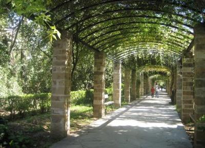 المنتزه الوطنى