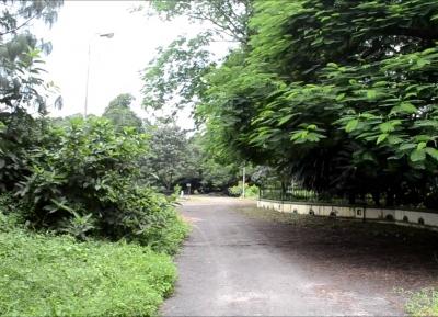 الحدائق النباتية