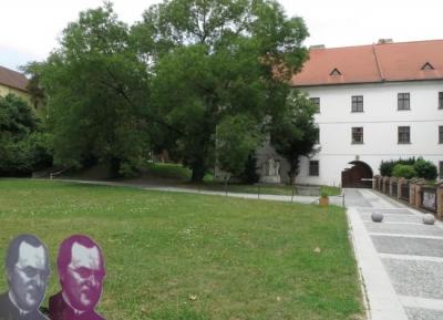 متحف مندل