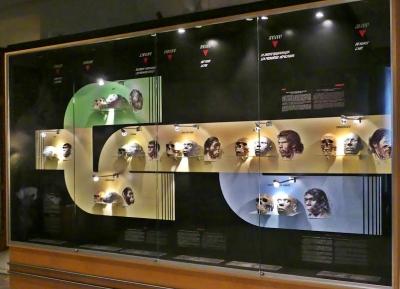 متحف سينكوانتينير