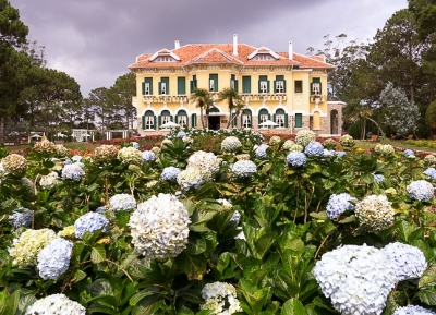 قصر الملك