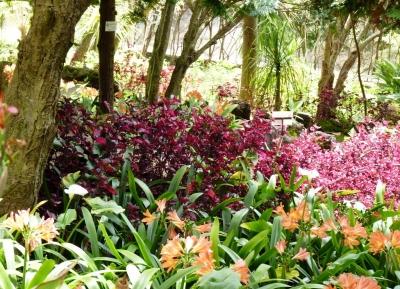 حديقة كوينتا دى بوا فيستا