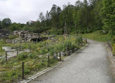 حدائق جبال الالب و القطب الشمالى النباتيه
