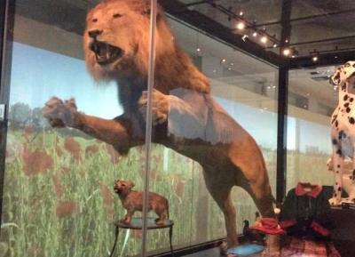 متحف مالمو