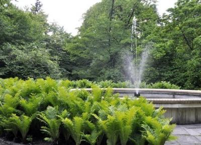 الحدائق النباتيه