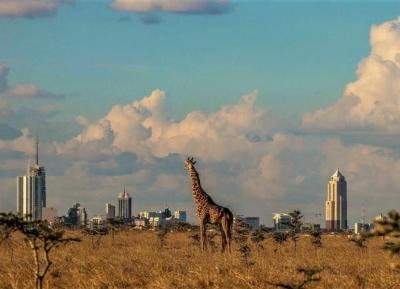 حديقة نيروبي الوطنية