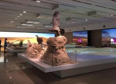 متحف مواطن الكويت