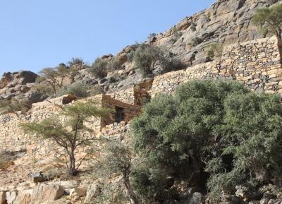محمية الجبل الأخضر للمناظر الطبيعية