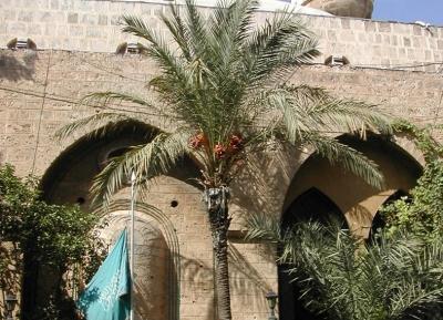 مسجد المصيطبة