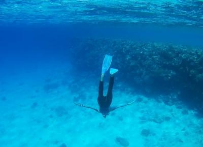 منطقة أبو جفان للشعاب المرجانية