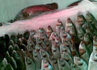 سوق الأنفوشي للسمك