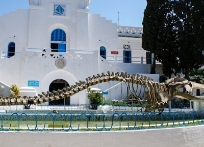 متحف المحيطات