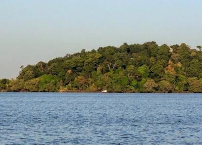 بحيرة تانا