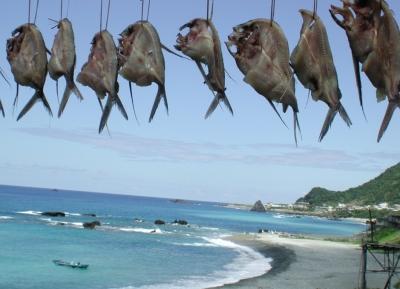 مهرجان السمك الطائر