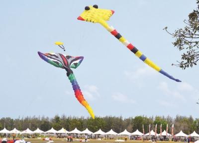 مهرجان تايلاند الدولي للطائرات الورقية