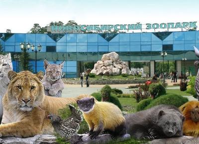 اوقات رائعه فى حديقة حيوان نوفوسيبيرسك