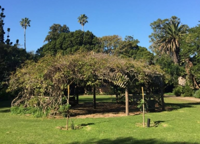 وقت رائع فى حديقه سان جورج