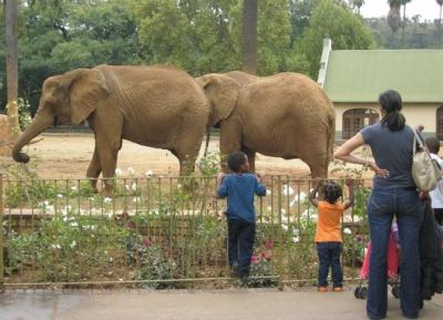جولة فى حدائق الحيوان الوطنيه