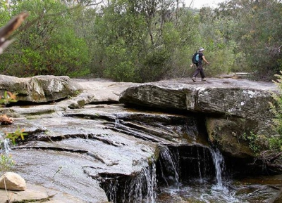 اقترب من الطبيعة في حديقة غاريغال الوطنية